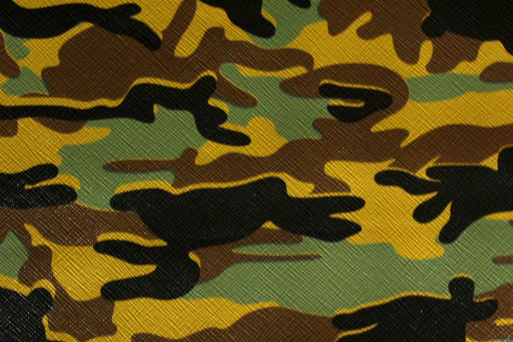 Camouflage_11