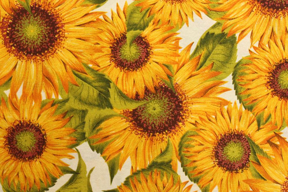 fashion_51_sunflower_big