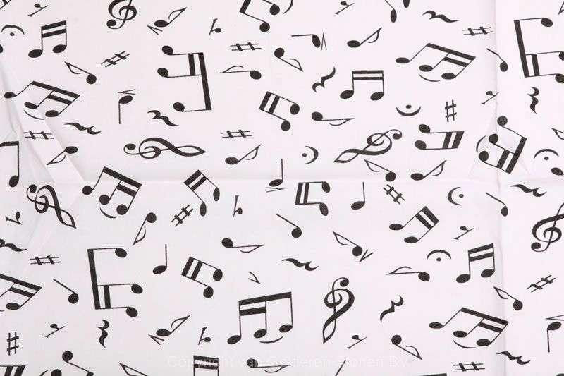 muziek_02aa