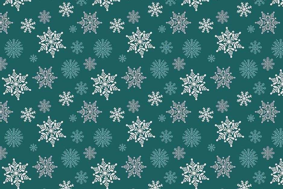 Kerst_Etoile_007