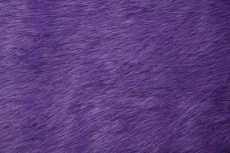 Royal_purple_2